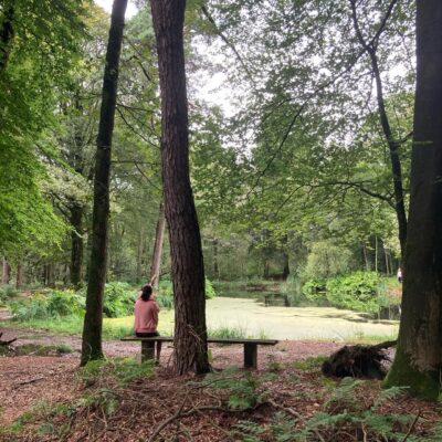 Stiltedag Friesland